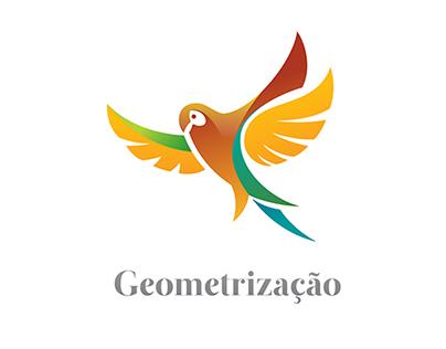 Geometrização