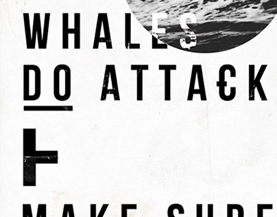 Whales do attack