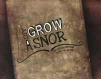 DIY Grow A Snor