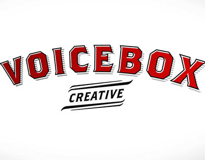 Voicebox Creative ID Animation