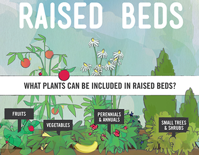 Raised Beds Infographic