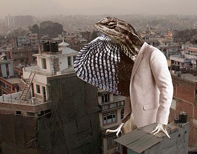 Our own Godzilla - Kathmandu