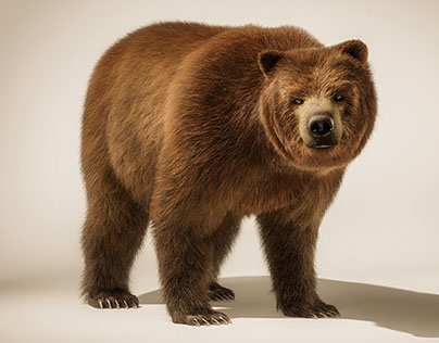 TANK the CGI Bear