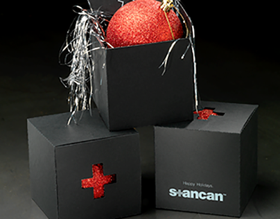 Stan Can Design Holiday 2013