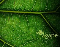 Agape - wellness catalogue