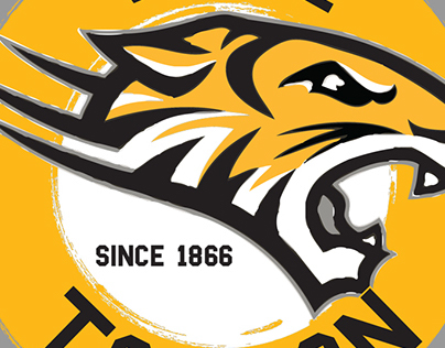 Print Design for Towson University