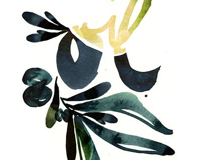 HANDLETTERING Olive Oil