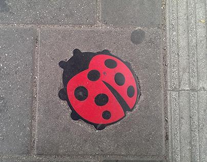 Ladybugs @ railway station