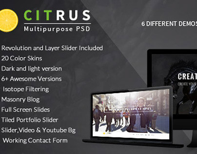 Citrus - One Page Parallax Portfolio