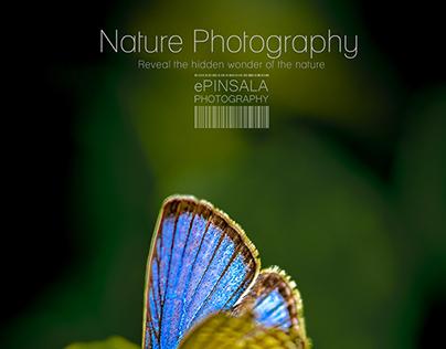 Nature Photography part 1