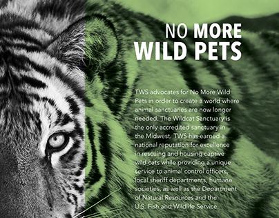No More Wild Pets: Non-Profit Campaign