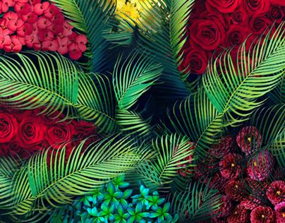 Yasmin - Music album cover