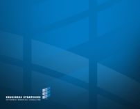 EBUSINESS STRATEGIES Identity, Collateral and Website