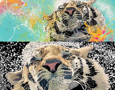 Tiger Splash vector drawings by K. Fairbanks