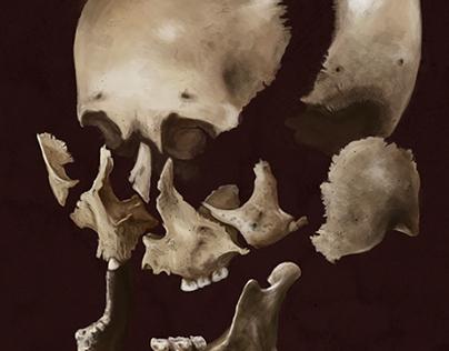 Beauchene Skull
