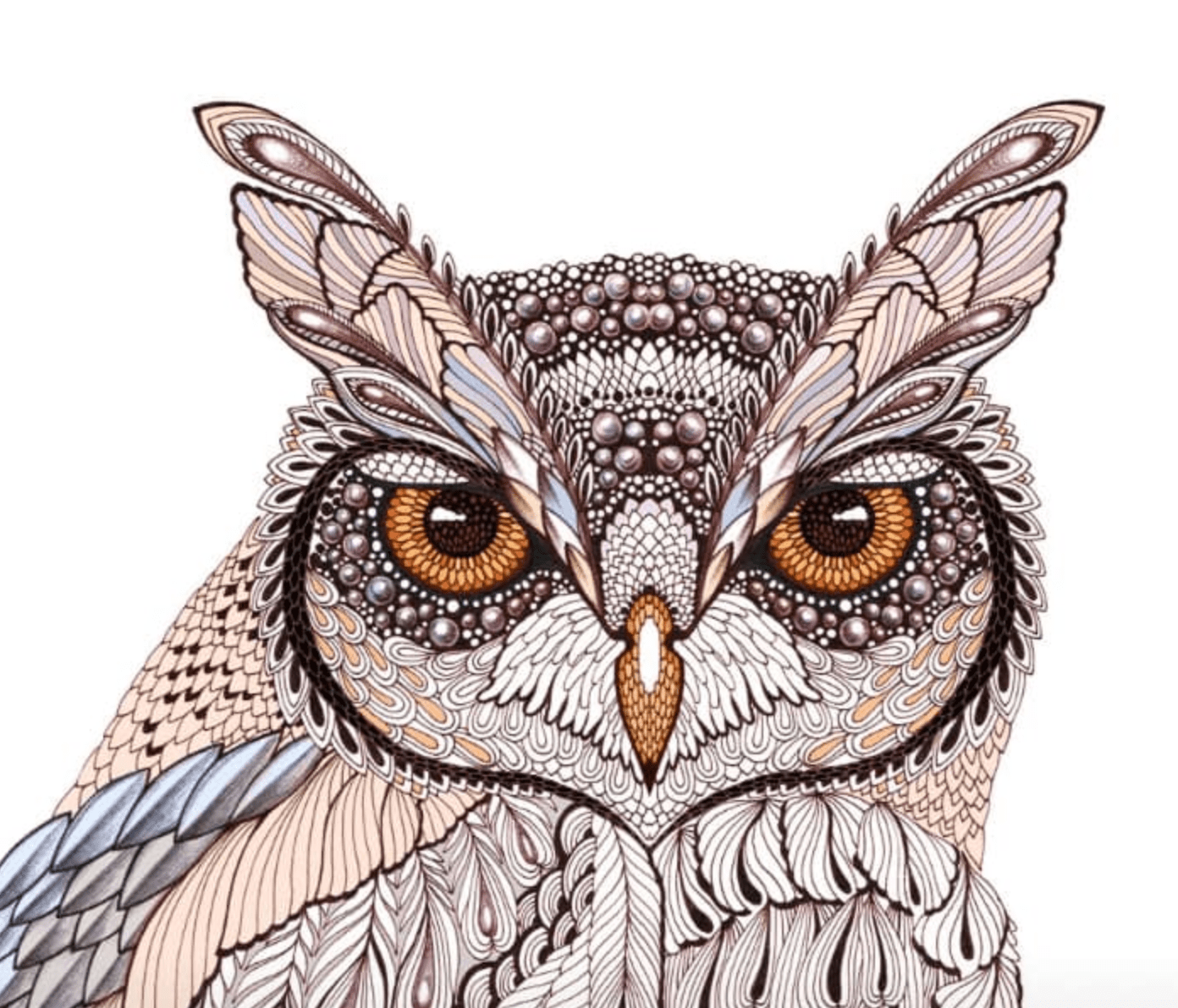 OWL. Design for www.atriumnyc.com