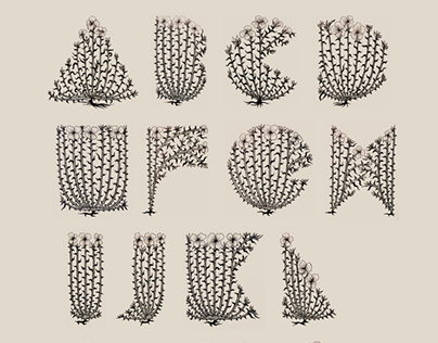 Carnation Alphabet