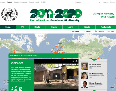 United Nations Decade on Biodiversity Website Design