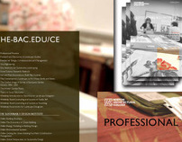 professional & continuing education