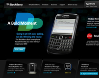 BlackBerry Website Concept