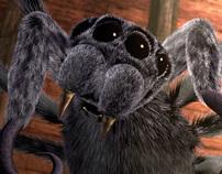 Spiders Walk