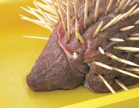 Ilustração: Representação do Ouriço-Cacheiro