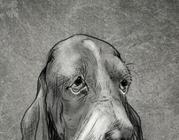 Dog Breeds series