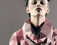 Fashion with Cubic Forms