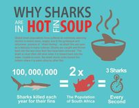 An Infographic: Shark Finning