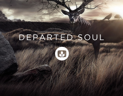 Departed Soul