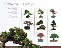 Print Catalog [Brussels Bonsai]