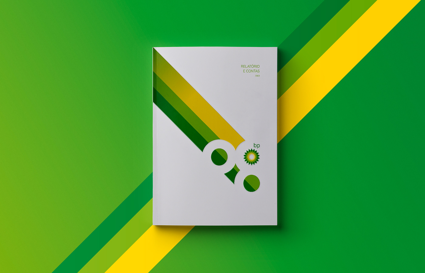 BP - annual report 2008