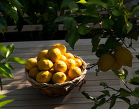 Ktima Lemonies | Website