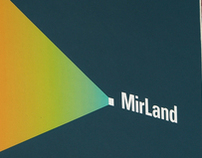 MIrland Developmet PLC. Corporate brochure
