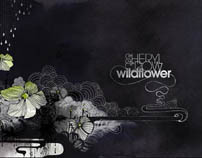 Sheryl Crow Wildflower CD Package