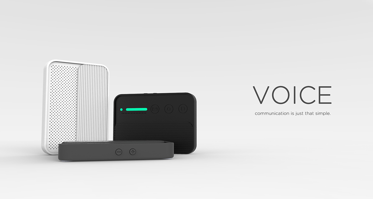 VOICE : Back to Basics