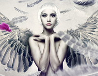 'PHOTOSHOP PROJECTS' BLACK SWAN TUTORIAL