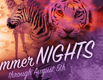 BUSCH GARDENS SUMMER NIGHTS BILLBOARD