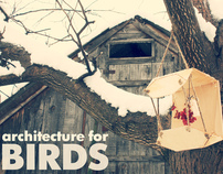 architecture for birds