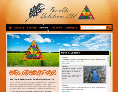 Pai Ake Solutions Website