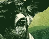 The Animal Series