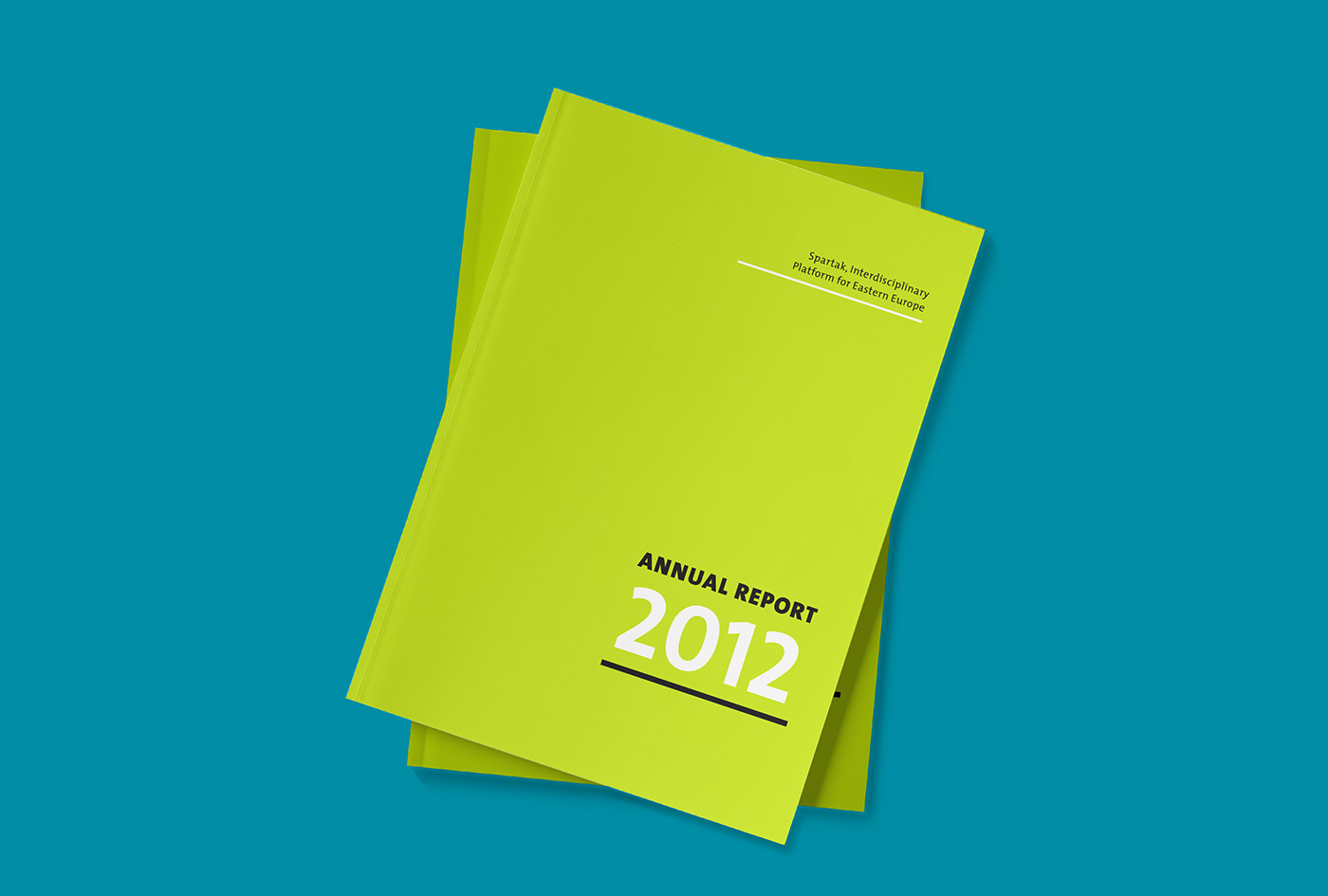 Annual Report // Editorial Design