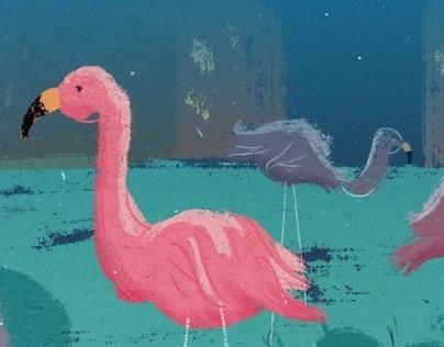 Flamingo Exercise