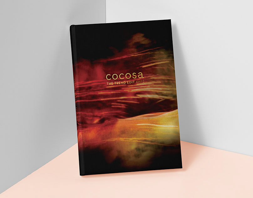 The Trend Edit AW12 by Cocosa