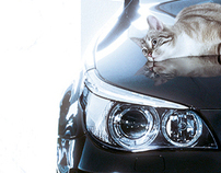 BMW - Sheer Driving Pleasure