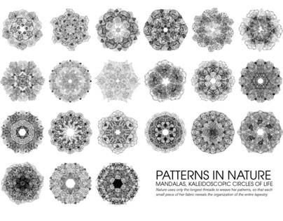 Mandalas of Nature