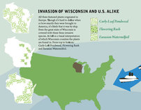 Invasive Species of the Great Lakes - Poster