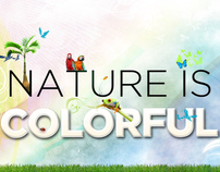 Nature is Colorful