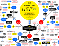 What Species Did You Evolve From? (Flowchart)