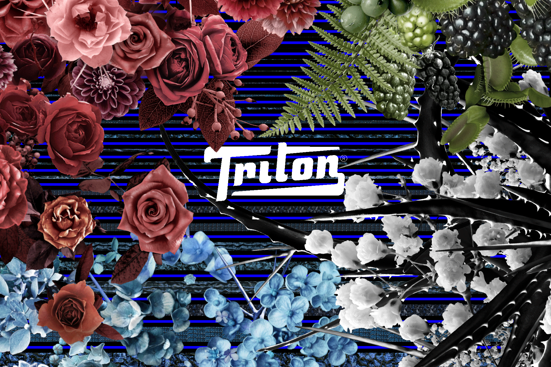 Triton - SPFW Winter 13
